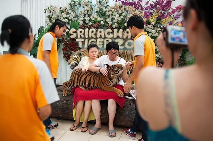 Chinese tourist4