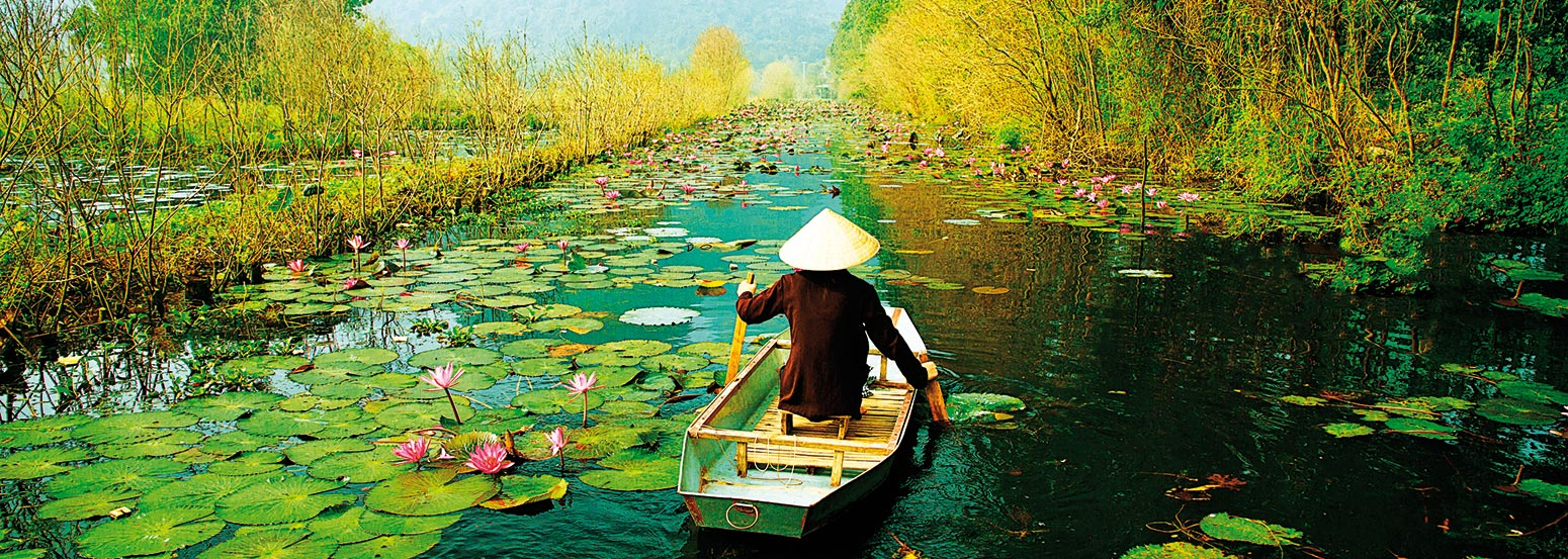 """Travel to Vietnam"" is more popular in China"