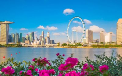 Marketing Guide to Attract Chinese Tourists to Singapore