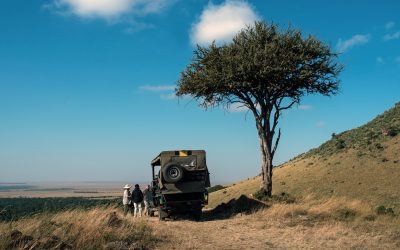 Chinese tourists to Kenyan safaris on rise