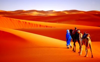 Chinese Tourists in Morocco: Opportunities for Travel Professionals